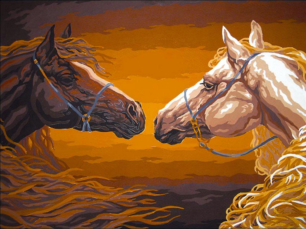 VK189 Раскраска по номерам Прекрасные лошади