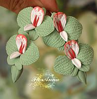 """Серьги с цветами """"Мятные орхидеи с бутонами"""", фото 1"""