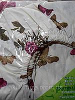 Простынь-резинка 160х200 Бабочка Бордо