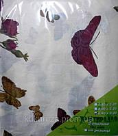 Полуторная белая простынь Бабочка Бордо