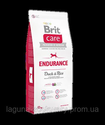 Brit Care Endurance 12 kg (д/активн. соб. всех пород), фото 2