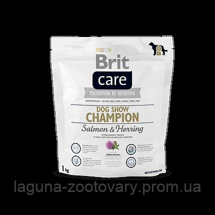 Brit Care Dog Show Champion 1 kg (д/выставочных собак), фото 2