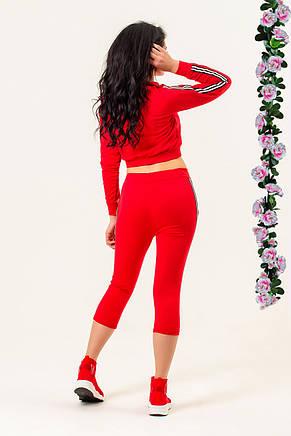 Красный женский спортивный костюм от производителя, фото 2