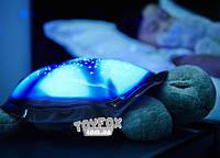 Черепаха Ночник (синяя)