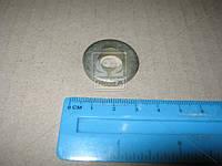 Шайба 12 головки блока дв. 402,511,66 (усиленная,толщина 5 мм) пр-во Украина. 293370-П8