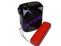 Радиоприёмник портативный GOLON RX-323W, фото 1