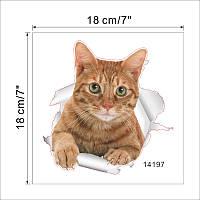 """3D наклейка на стену """"Котик"""""""