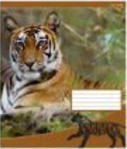 Зошит загальний Knopka, 48 аркушів, клітинка, The wild nature, 16/192, 00031