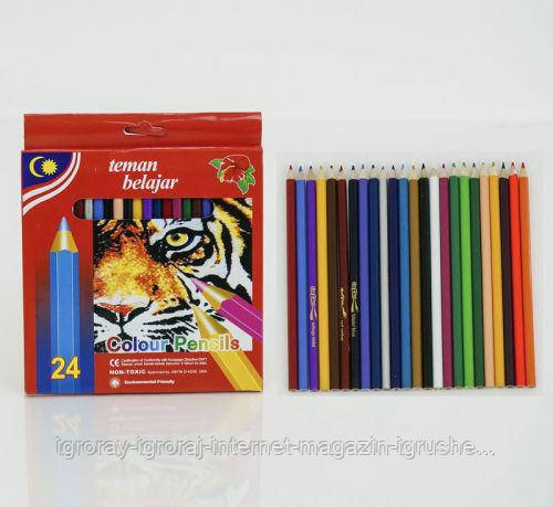 Цветные карандаши (24 цвета) 01376