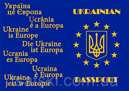 Обложка на паспорт 8