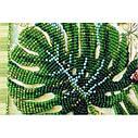 """Набор-миди для вышивки бисером на натуральном художественном холсте """"Монстера"""", фото 5"""