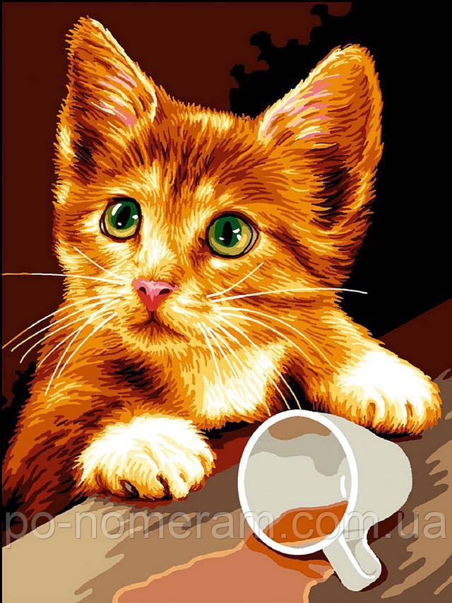 раскраска для девочек кот