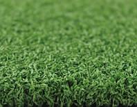Штучна трава CCGrass Green E 12 ( висота ворсу-12 мм )