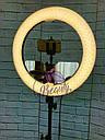 Кольцевая бьюти лампа RL-18 Мультисвет Премиум LED Pro Beauty Light 96ВТ 48СМ, фото 3