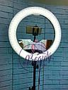 Кольцевая бьюти лампа RL-18 Мультисвет Премиум LED Pro Beauty Light 96ВТ 48СМ, фото 2