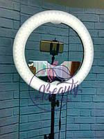 Комплект кольцевой круглой лампы Мультисвет Премиум LED Pro Beauty Light