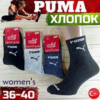 """Носки спортивные демисезонные """"Puma"""" средние 36-40р NMD-05818"""