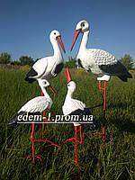 Семья садовых аистов из 4 птиц