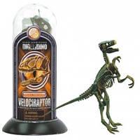 Научный набор Скелеты динозавров Велоцираптор Dino