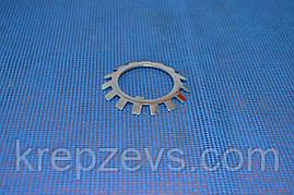 Шайба М10 стопорная многолапчатая ГОСТ 11872-80, DIN 5406