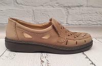 Туфли мужские летние классические Tigina кожа перфорация коричневые 0368КФМ