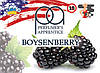Boysenberry ароматизатор TPA (Бойзенова ягода)