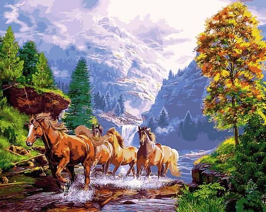 VP924 Набор-раскраска по номерам Лошади на берегу горного озера, фото 2