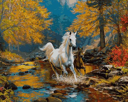 VP925 Набор-раскраска по номерам Первая осень, фото 2