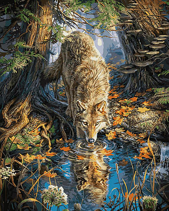 """VP930 Раскраска по номерам """"Волк на водопое"""", фото 2"""