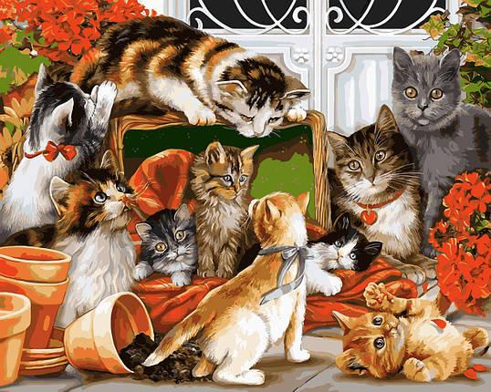 VP934 Набор-раскраска по номерам Кошачья семейка, фото 2