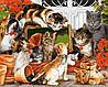 VP934 Набор-раскраска по номерам Кошачья семейка
