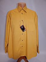 Мужская рубашка с длинным рукавом Printer 122ДР р.48
