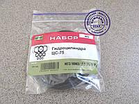 Ремонтный комплект гидроцилиндра ЦС-75.