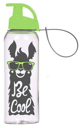 Бутылка для спорта Herevin Be cool 500 мл (161415-160), фото 2