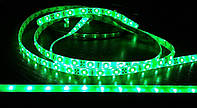 Светодиодная лента 3528-60 IP65 G зеленая, герметичная