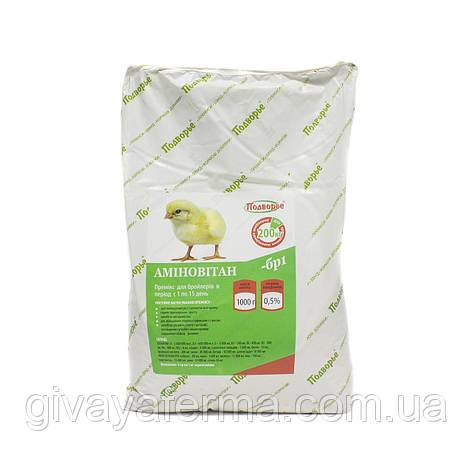 Премикс Аминовитан БР-1 бройлер 1-21 день 0,5%, 1 кг,  витаминно-минеральный комплекс, фото 2