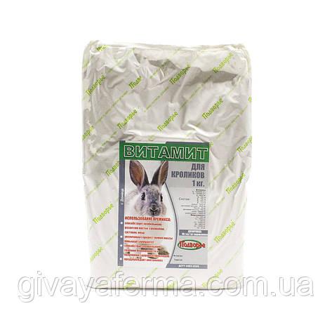 Премикс Витамит - кролик 1%, 1 кг (витамины, микроэлементы), фото 2