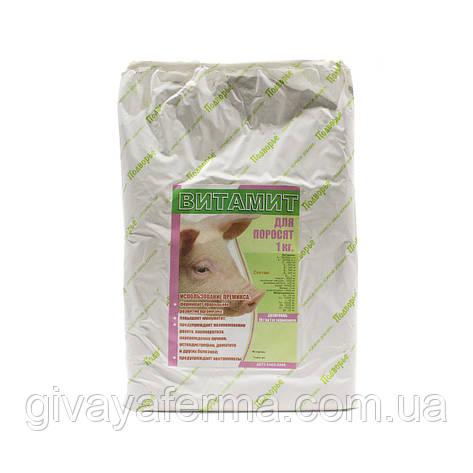 Витаминный премикс Витамит - поросенок 1%, 1 кг, витаминно минеральная добавка к корму, фото 2