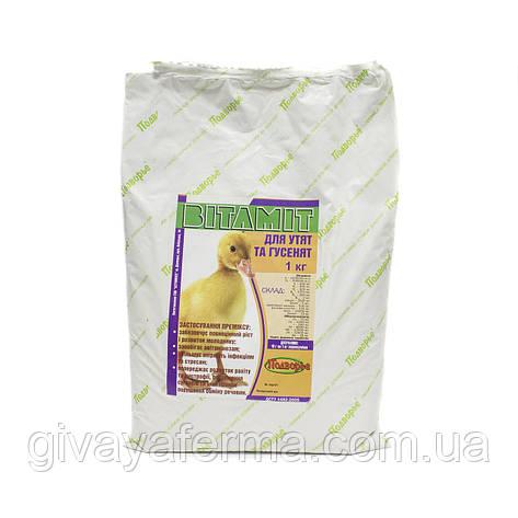 Витаминный премикс Витамит - утенок 1%, 1 кг, витаминно-минеральный комплекс, фото 2