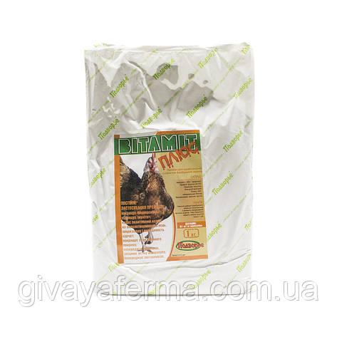 Витамит - несушка ПЛЮС (карофилы) 1%, 1 кг, ОКРАШИВАНИЕ ЖЕЛТКА, витаминный премикс, фото 2