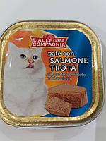 Консервы для кошекL'allegra Compagnia паштет с форелью 100г. Италия