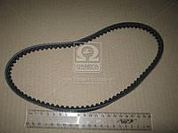 Ремень клиновой AVX10х713 (производство DONGIL) (арт. AVX10х713)