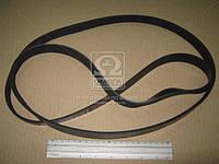 Ремень поликлиновый 6PK1930 (производство DONGIL) (арт. 6PK1930), ABHZX