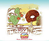Печенье Divella Ottimini Alle Nocciole с фундуком, 350 гр., фото 3