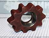 Звездочка (трясун) на вал передний картофелекопалки однорядной Wirax, фото 2