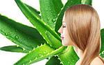 Использование алоэ для ухода за волосами