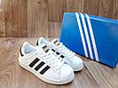 Женские Кроссовки в стиле Adidas Super Star белые с черным кожа с коробкой