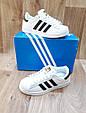 Женские Кроссовки в стиле Adidas Super Star белые с черным кожа с коробкой, фото 3