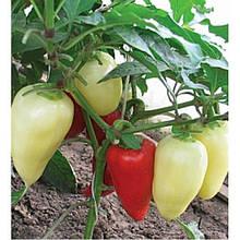 Семена перца Белозерка  оптом от производителя.