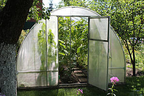 Теплиця Люкс 3х4х2м з полікарбонатом Greenhouse 4 мм